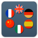 Grey icon with 6 different circle flags