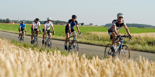 Cyclists in the French countryside