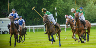 Polo day players